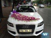Cho thuê xe cưới 4 chỗ Audi A4