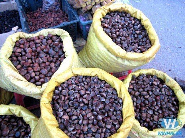 Hạt dẻ Trùng Khánh – Đặc sản nổi tiếng của Cao Bằng
