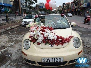 Dịch vụ cho thuê xe 4 chỗ Volkswagen tại Hà Nội