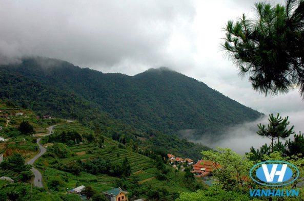 Với khí hậu dịu mát và phong cảnh thiên nhiên tươi đẹp, Tam Đảo là điểm du lịch hấp dẫn nhiều du khách  đến thăm quan, nghỉ dưỡng