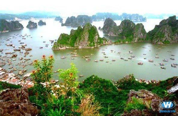 Vẻ đẹp hùng vĩ của Đảo Tuần Châu
