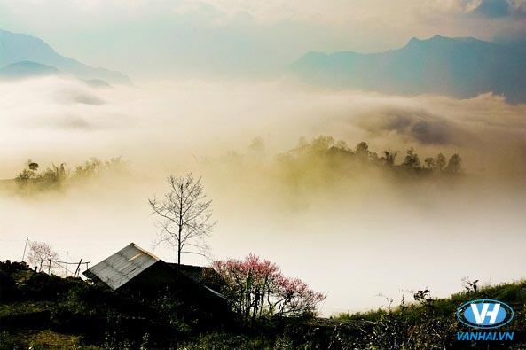 Y Tý tứ bề là núi cao, quanh năm mây mù che phủ
