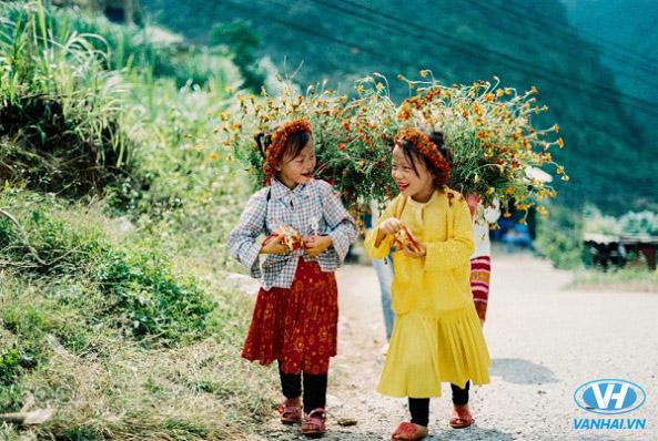 Thiên nhiên tươi đẹp của Hà Giang