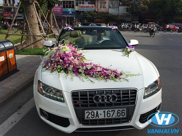 Dàn xe cưới sang trọng của Vân Hải