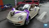 Thuê xe cưới Volkswagen mui trần hiện đại, giá rẻ