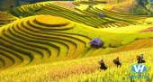 Du lịch hà giang tháng 9 – khám phá vẻ đẹp vùng địa đầu Tổ quốc