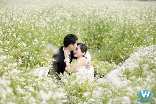 Những shoot hình vô cùng đẹp từ cánh đồng hoa cải trắng