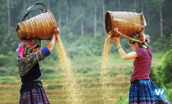 Kinh nghiệm du lịch Hà Giang tự túc đầy đủ nhất cho năm 2018