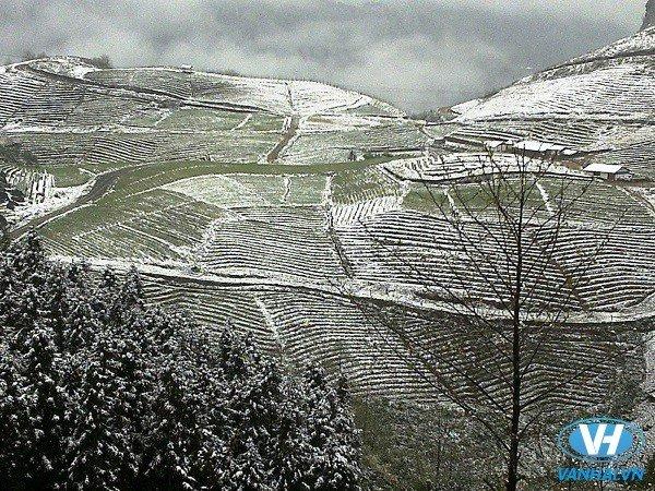 Sa Pa mùa đông như một thành phố Bắc Âu chìm trong tuyết