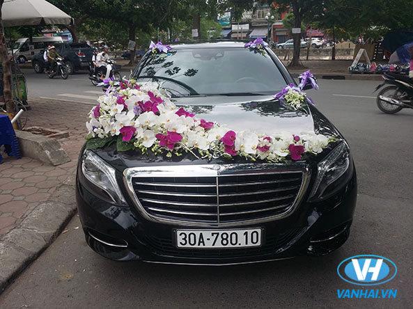 Trên thị trường có rất nhiều mẫu xe cưới hiện đại cho bạn lựa chọn