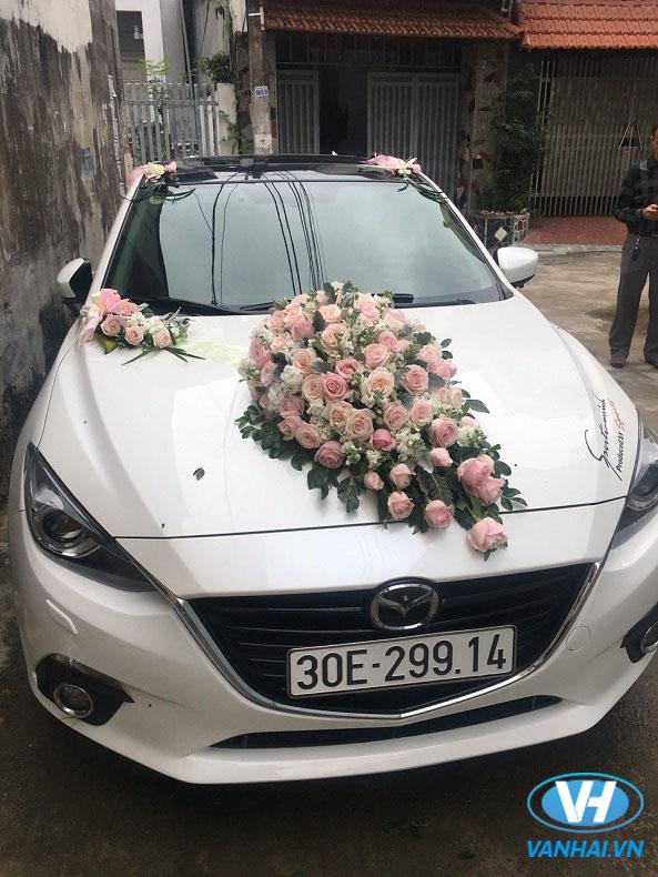 Vân Hải cho thuê xe cưới hỏi giá rẻ nhất