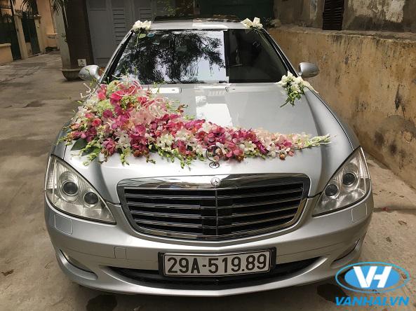 Nhiều mẫu xe cưới thời thượng được Vân Hải đưa vào phục vụ khách hàng