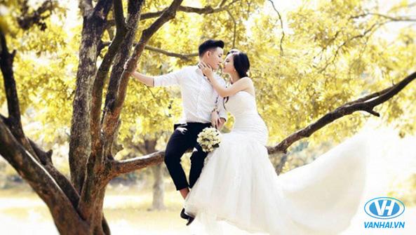 Những chiếc váy cưới nhẹ nhàng tinh tế đang được nhiều cô dâu lựa chọn