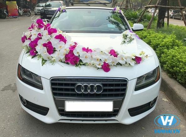 Vẻ ngoài ấn tượng của chiếc xe cưới Audi A5 mui trần