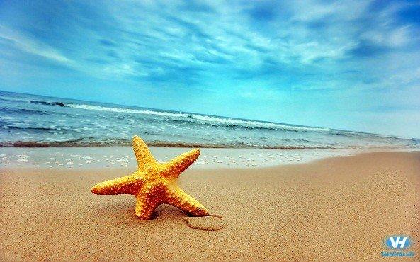Bãi tắm Hồng Vàn với biển xanh, cát trắng, nắng vàng