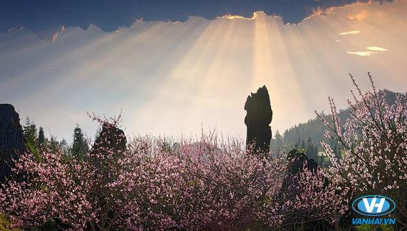 Toàn cảnh Sapa nhìn từ núi Hàm Rồng