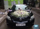 Cho thuê xe cưới Toyota Altis giá rẻ, chất lượng nhất Hà Nội